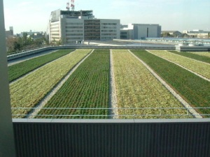 toyota-roof-gardens-3_businessweek