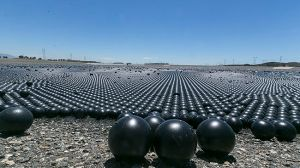 4-inch Black Plastic Shade Balls Source: Accuweather